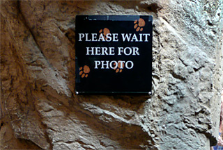 Please Wait Here for Photo sign