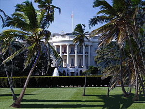 Soon the White House lawns will be full of palm groves.